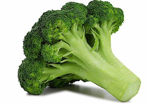 broccoli.png (243621 bytes)