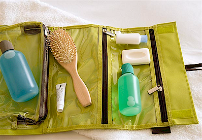 toiletries-medicine-carry-on.png (215143 bytes)