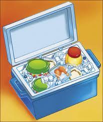 picnic cooler.jpeg (10852 bytes)